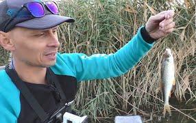 Риболовля на Криворіжжі: Дзержинське водосховище
