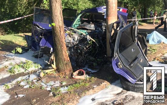 В Кривом Роге легковушка влетела в столб, водитель погиб на месте
